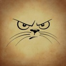 angry cat -681597_960_720