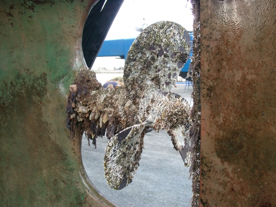 Barnacle encrusted prop