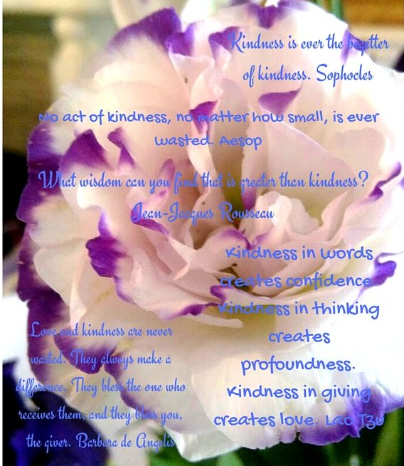 Random Acts of Kindness 1