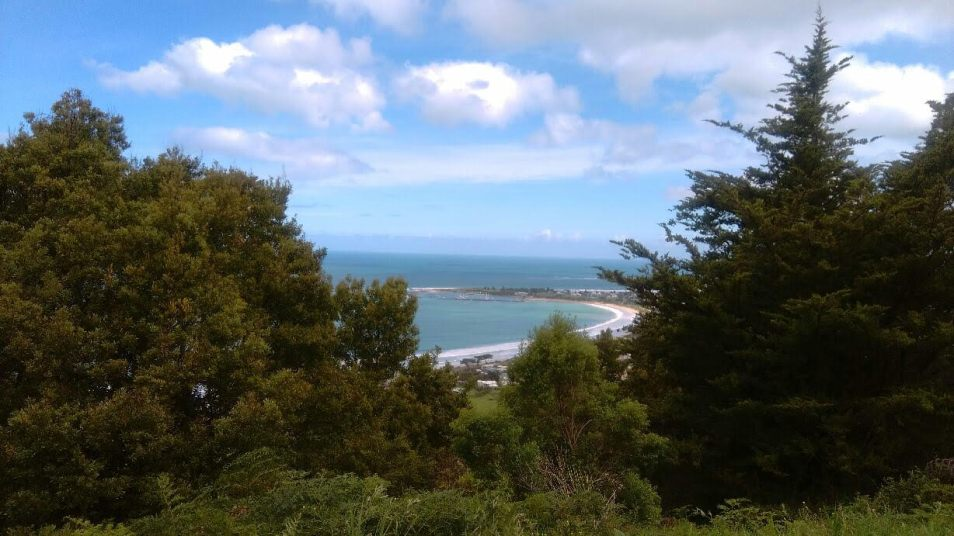 Overlooking Apollo Bay from the hills