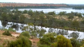 View of the Murray River from the balcony